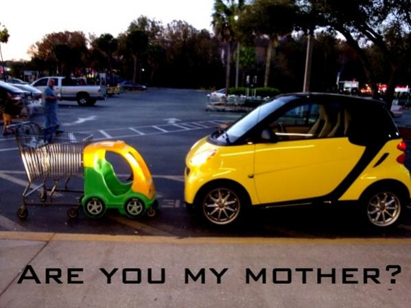 Share Your Latest Iq Small Car Joke With Us